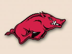 Arkansas Razorbacks Cornhole Decals