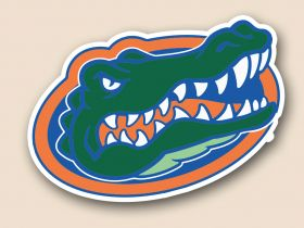 Florida Gators Cornhole Decals