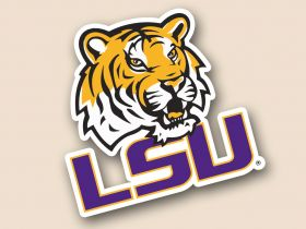LSU Tigers Cornhole Decals