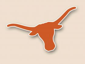 Texas Longhorns Cornhole Decals