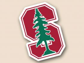 Stanford Cardinal Cornhole Decals
