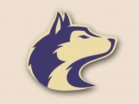 Washington Huskies Cornhole Decals